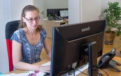 X-Net Arbeitsplatz Software-Entwicklung